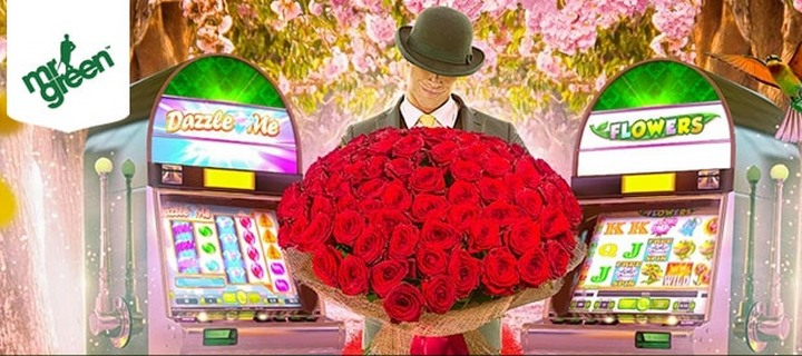 Flowers is in the Reels at Mr Green Casino