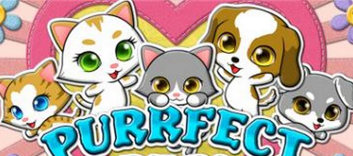 Purrfect Pets New Video Slot Machine from RTG